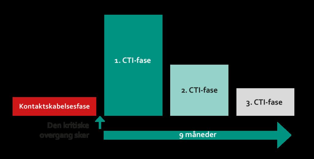 CTI- den faseopdelte model